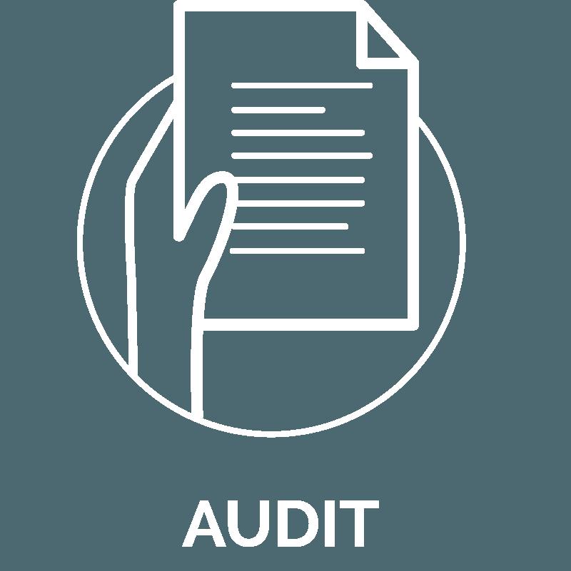 pictogramme nos offres, audit